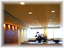 commecial lighting design contractor